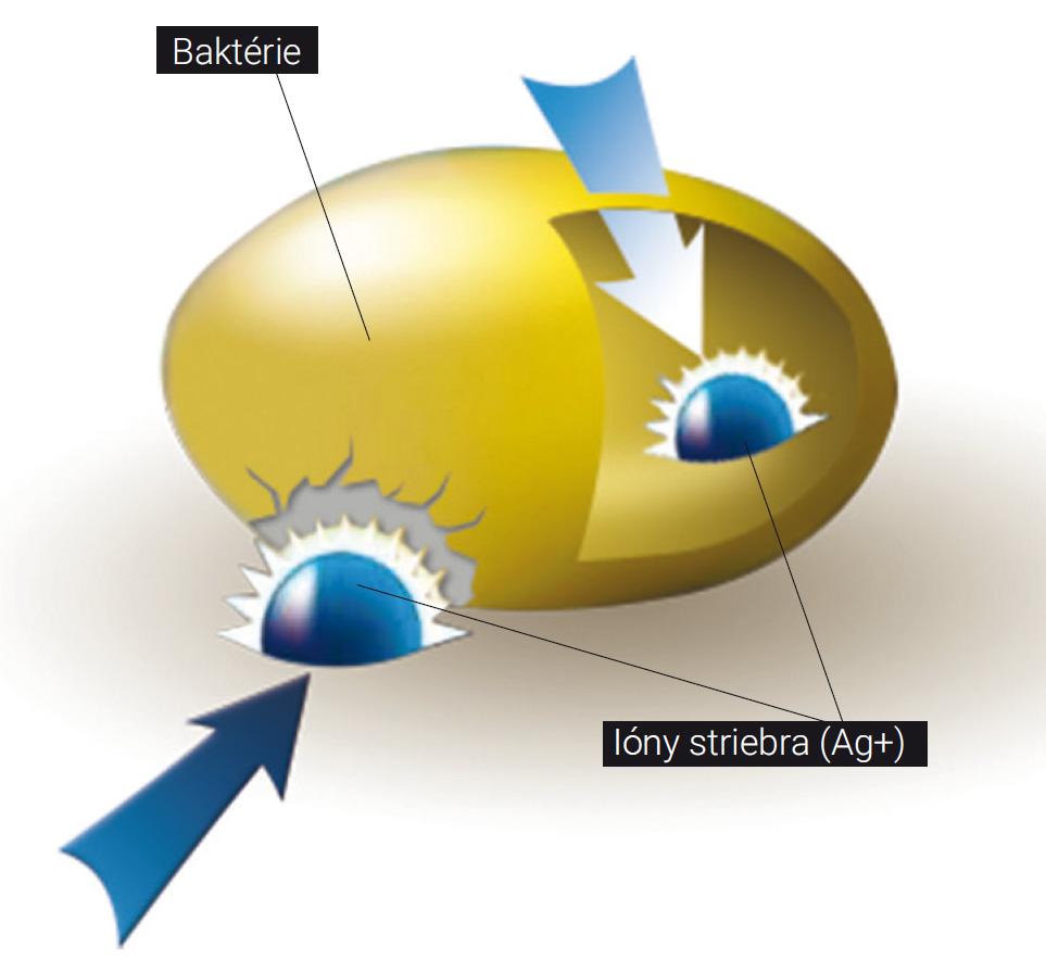 Ionizované striebro ničí bunečnú stenu baktérie